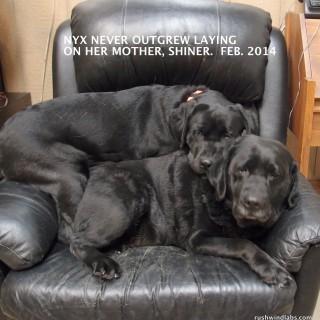 Nyx and Mama Shiner