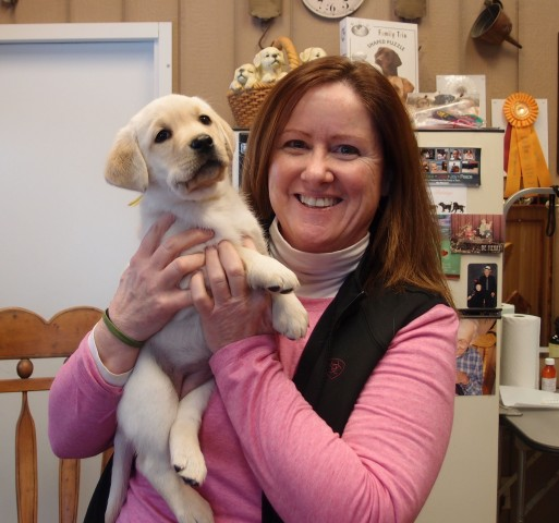 Miss Yellow went to her new family. Peggy Krohn of Winterwinds Labradors.
