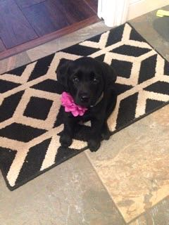 Zoe with her purple flower on!